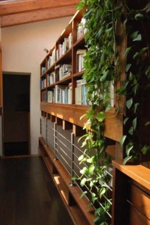 una libreria in legno e dell' edera cadente