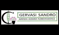 Vivai Gervasi Sandro