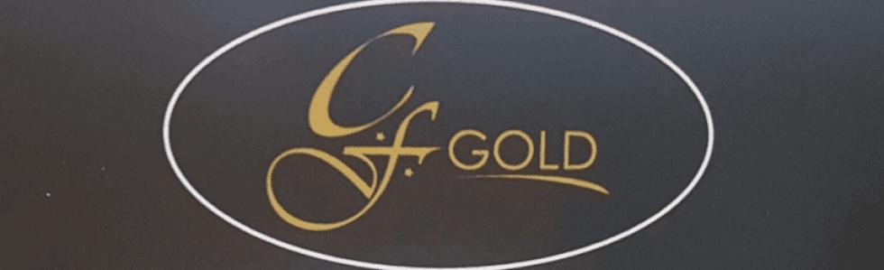 G.F. Gold Compro Oro Trecate