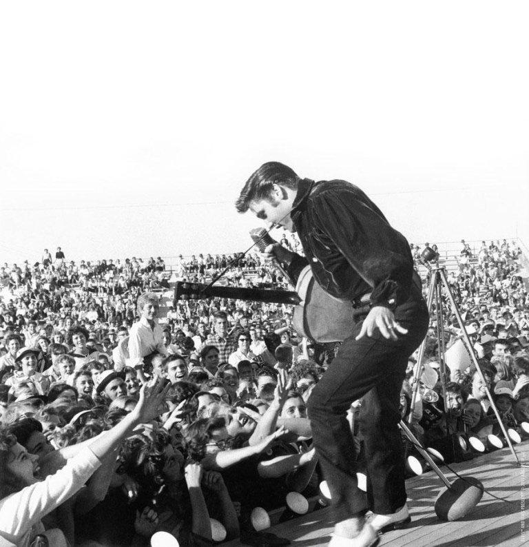 Ventura Elvis