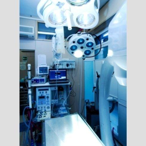 Ambulatorio Veterinario Masaccio - Diagnostica per immagini - Intensificatore di Brillanza