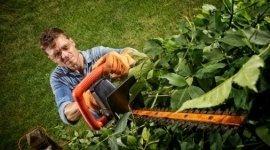 sfalcio erba da giardini