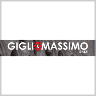 www.gigliandmassimo.com