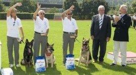 scuola cani da difesa