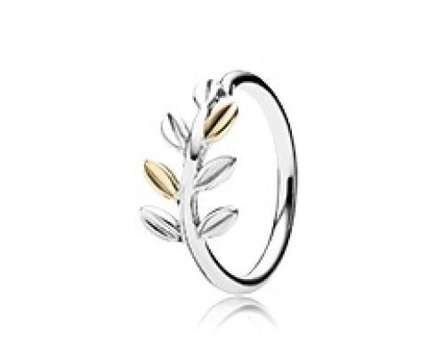 Anelli in argento e oro