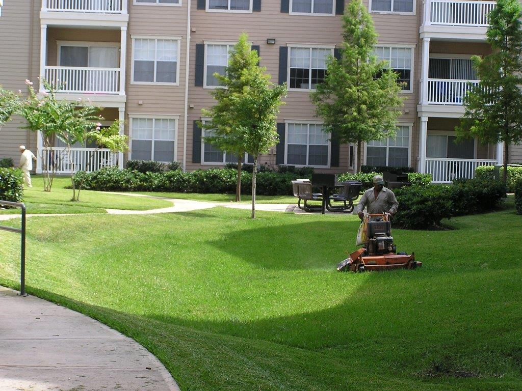 Commercial landscape lawn maintenance collins landcare for Gardening services