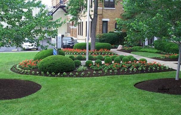 Commercial landscape lawn maintenance collins landcare for Commercial landscaping