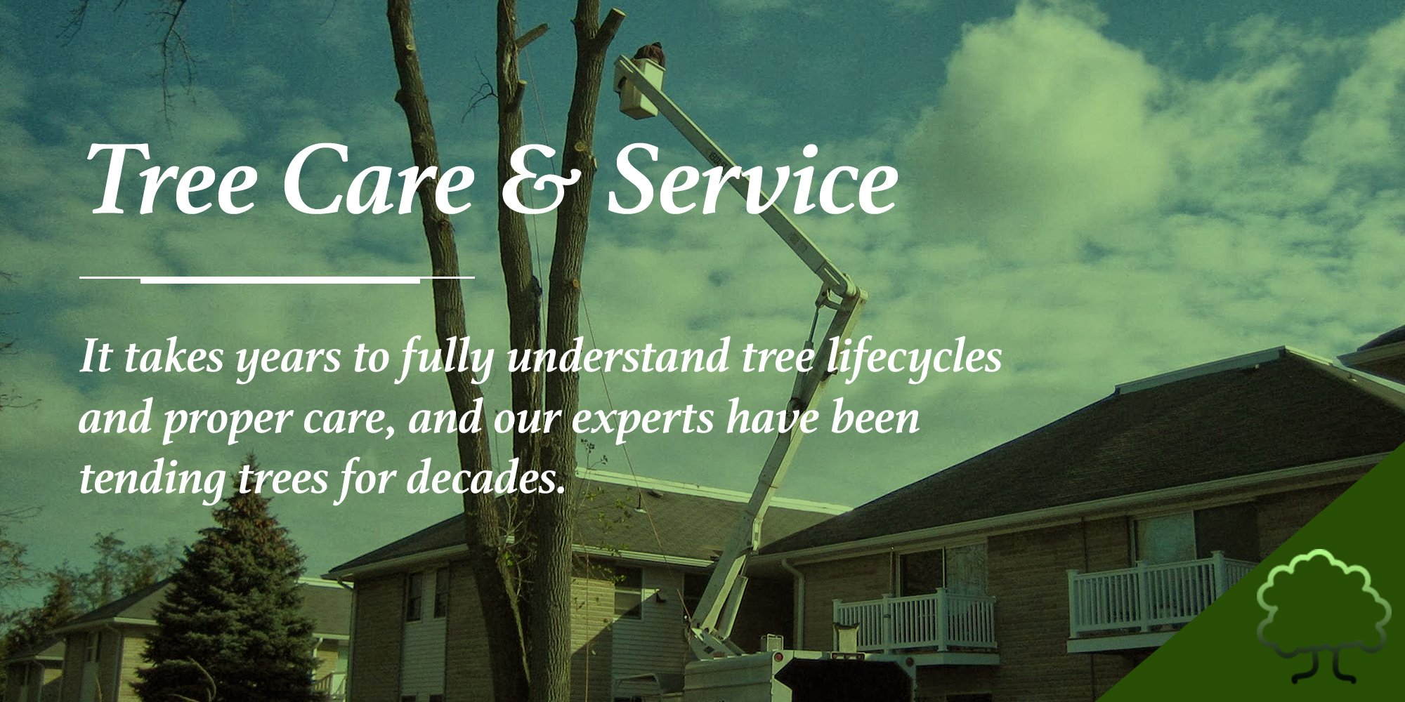 Tree Care Services in NJ