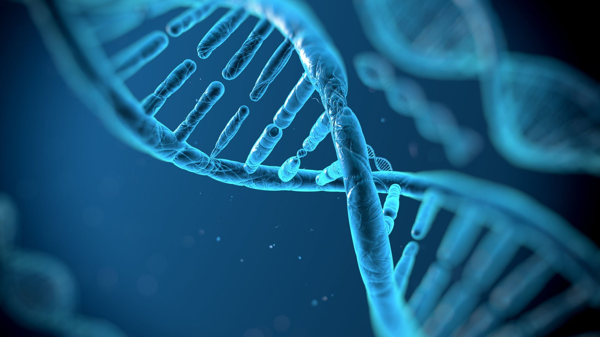 South Africa to Fight Crime with New DNA Law