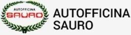Autofficina Sauro snc