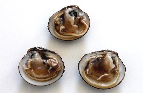 tartufi di mare