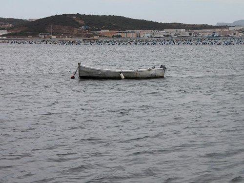 mare con barche