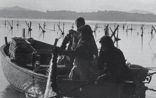 pesca di cozze-foto in bianco e nero
