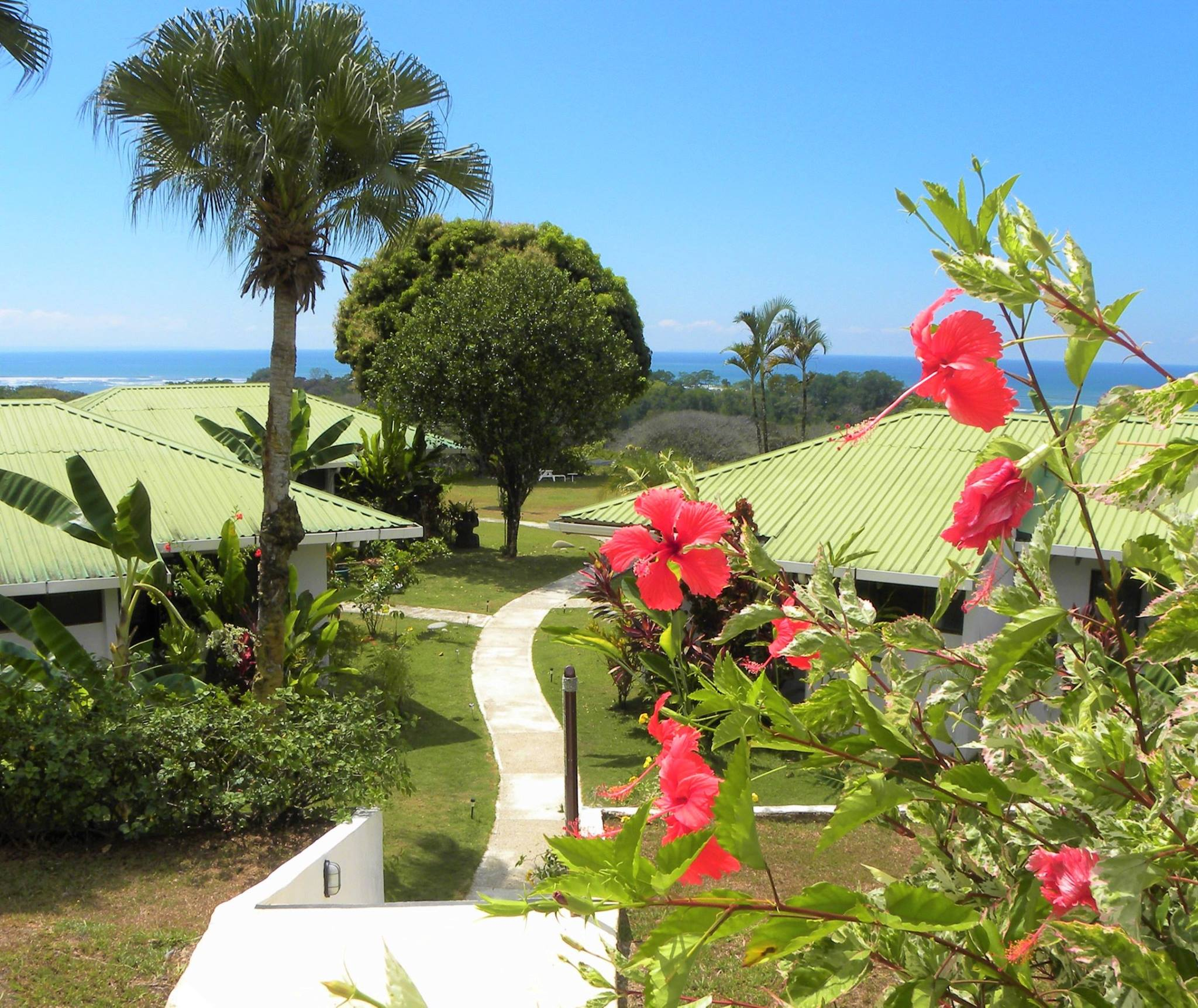 Grounds at the Lookout at Playa Tortuga
