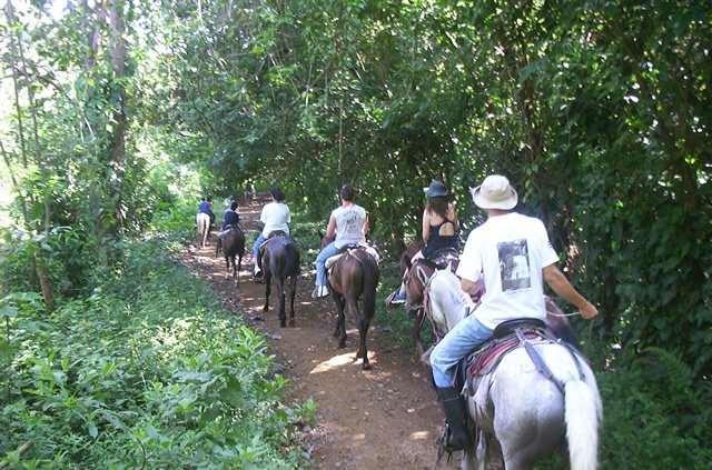 Horseback riding at the Lookout at Playa Tortuga
