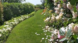 giardini piccoli