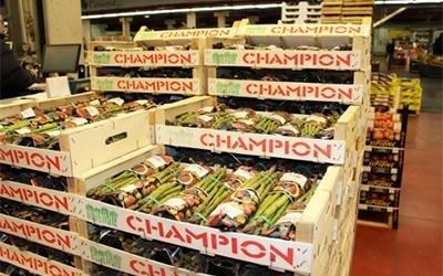 ingrosso asparagi