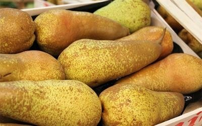 wholesale pears