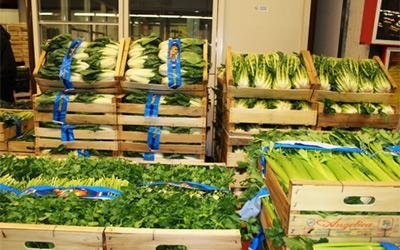 wholesale vegetables
