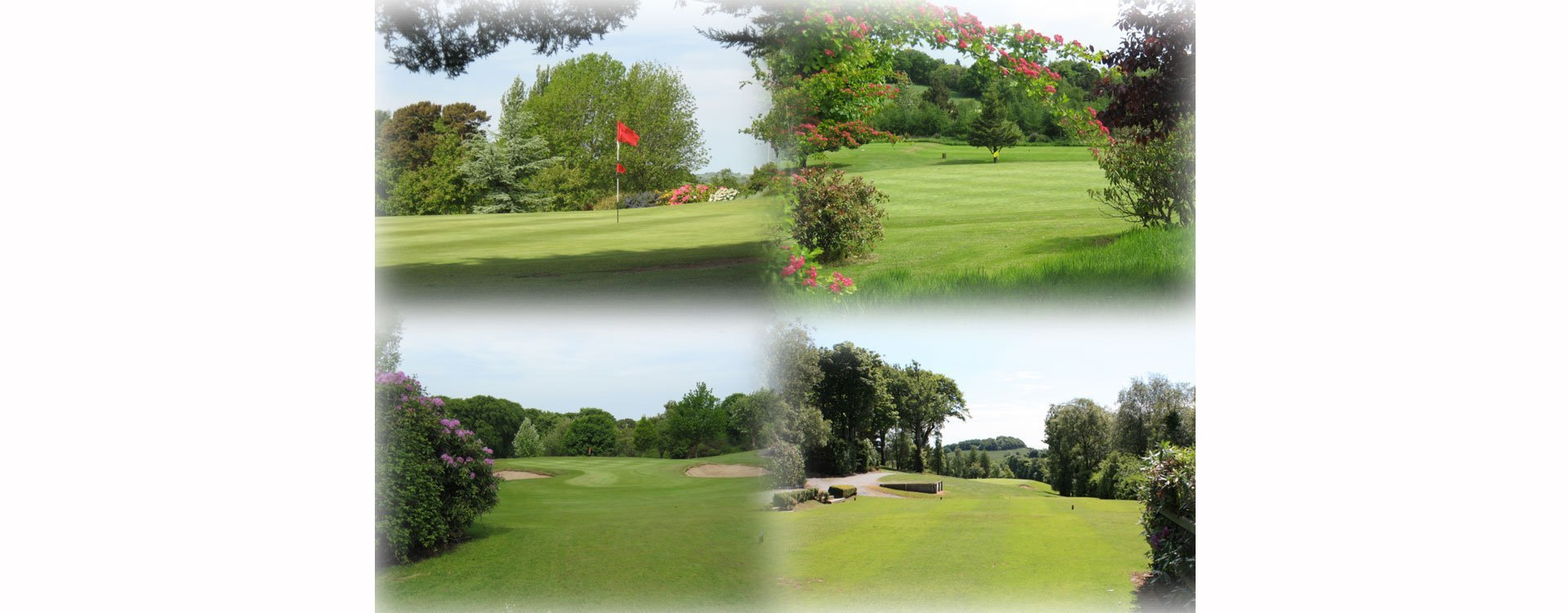 different views of the golf area