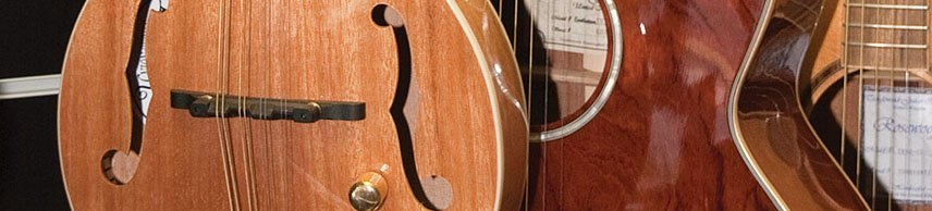 view of the mandolin