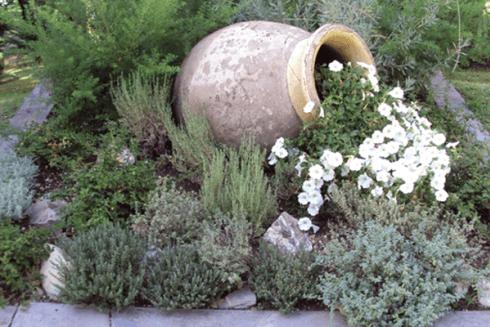 Un vaso di terracotta e intorno delle piante e fiori bianchi