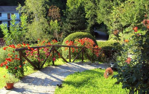 Una camminata con corrimano in legno e intorno delle piante e dei fiori rossi