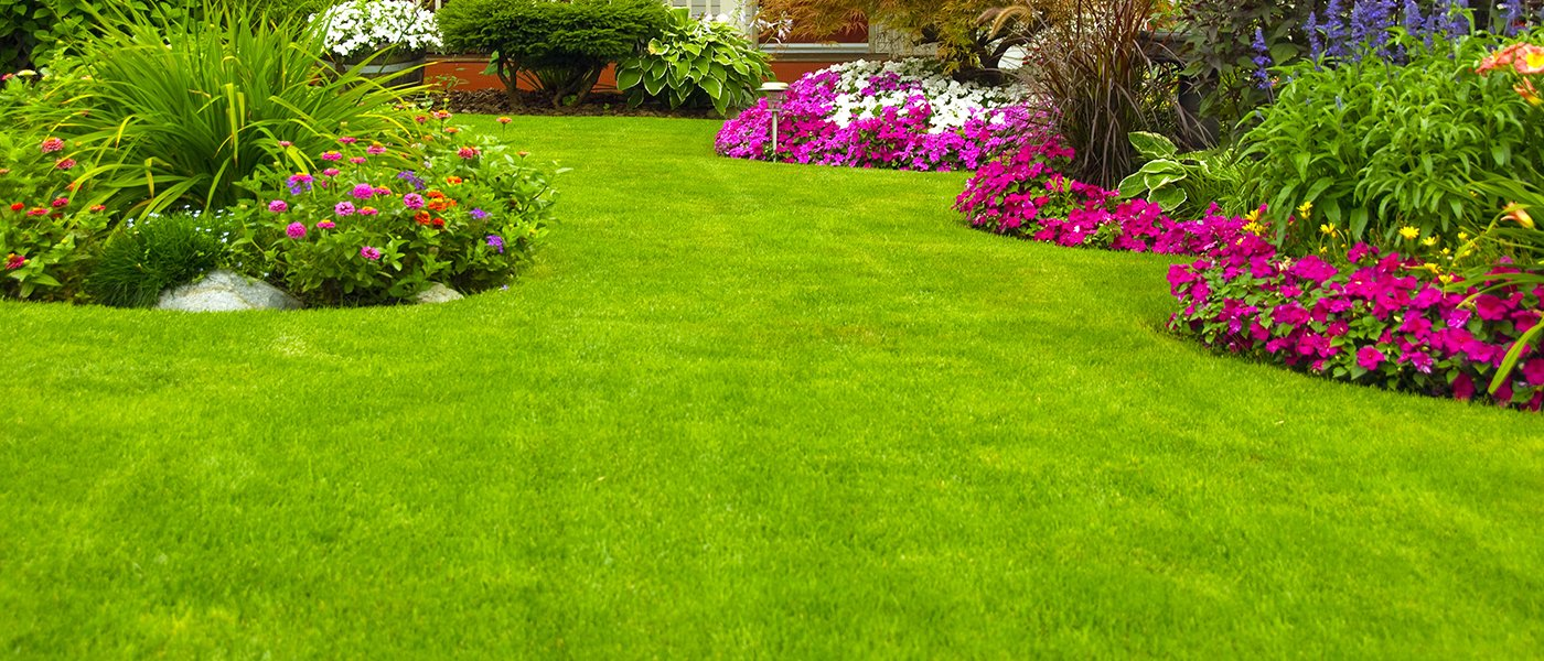 giardino con fiori jo49 pineglen