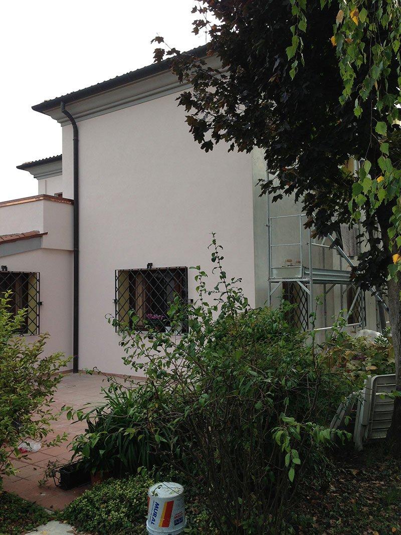 vista di alcune piante, un albero e una casa bianca