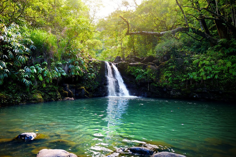 Road to Hana + Pearl Harbor Tour from Kapalua & Kaanapali (R/T Airfare Incl.)