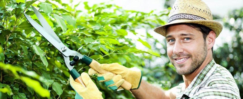 manutenzione giardini a Cagliari