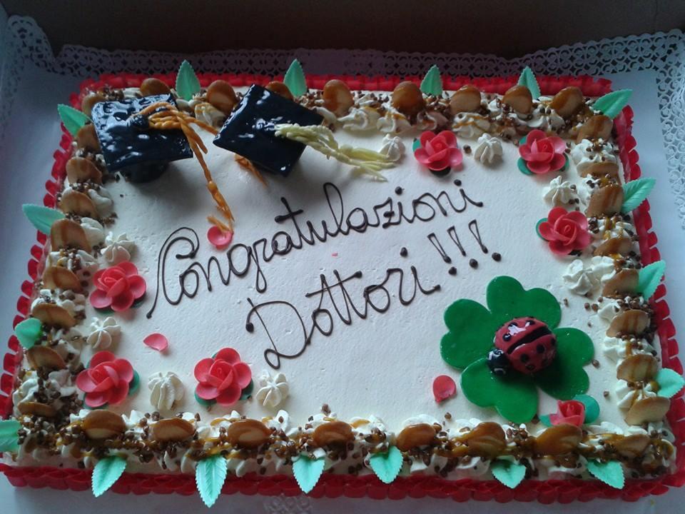 torta a forma rettangolare con panna, praline sull'estremita',una coccinella sulla foglia e la scritta Congratulazioni Dottori