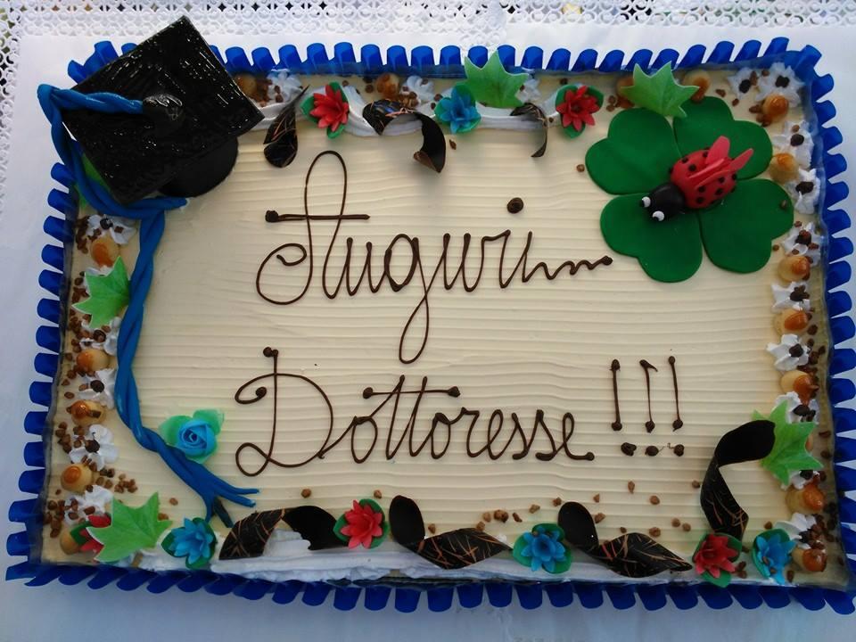 torta rettangolare con panna, bordi e fiori blu e rossi e scritta  Auguri Dottoresse con affianco una coccinella su una foglia