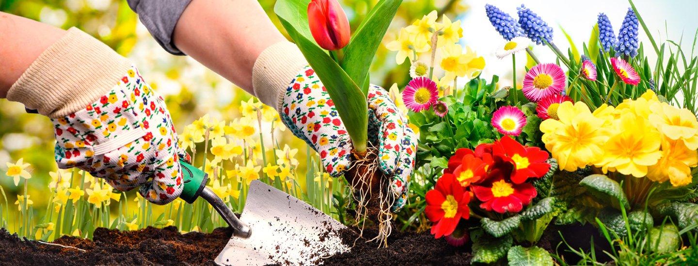 Atrezzi per il giardinaggio