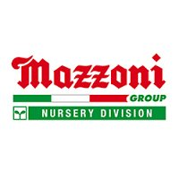 Mazzoni logo