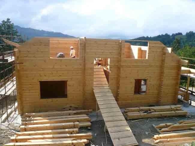 Flat log house