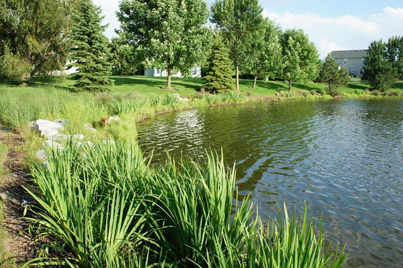Landscaping Services, Algonquin, IL