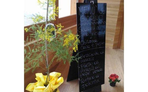 menu del giorno due bologna