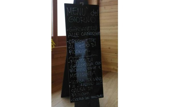 menu del giorno bologna