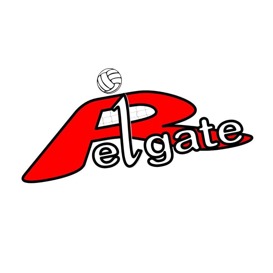 Reigate VC Logo
