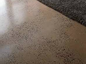 Floors By Powell Polished Concrete