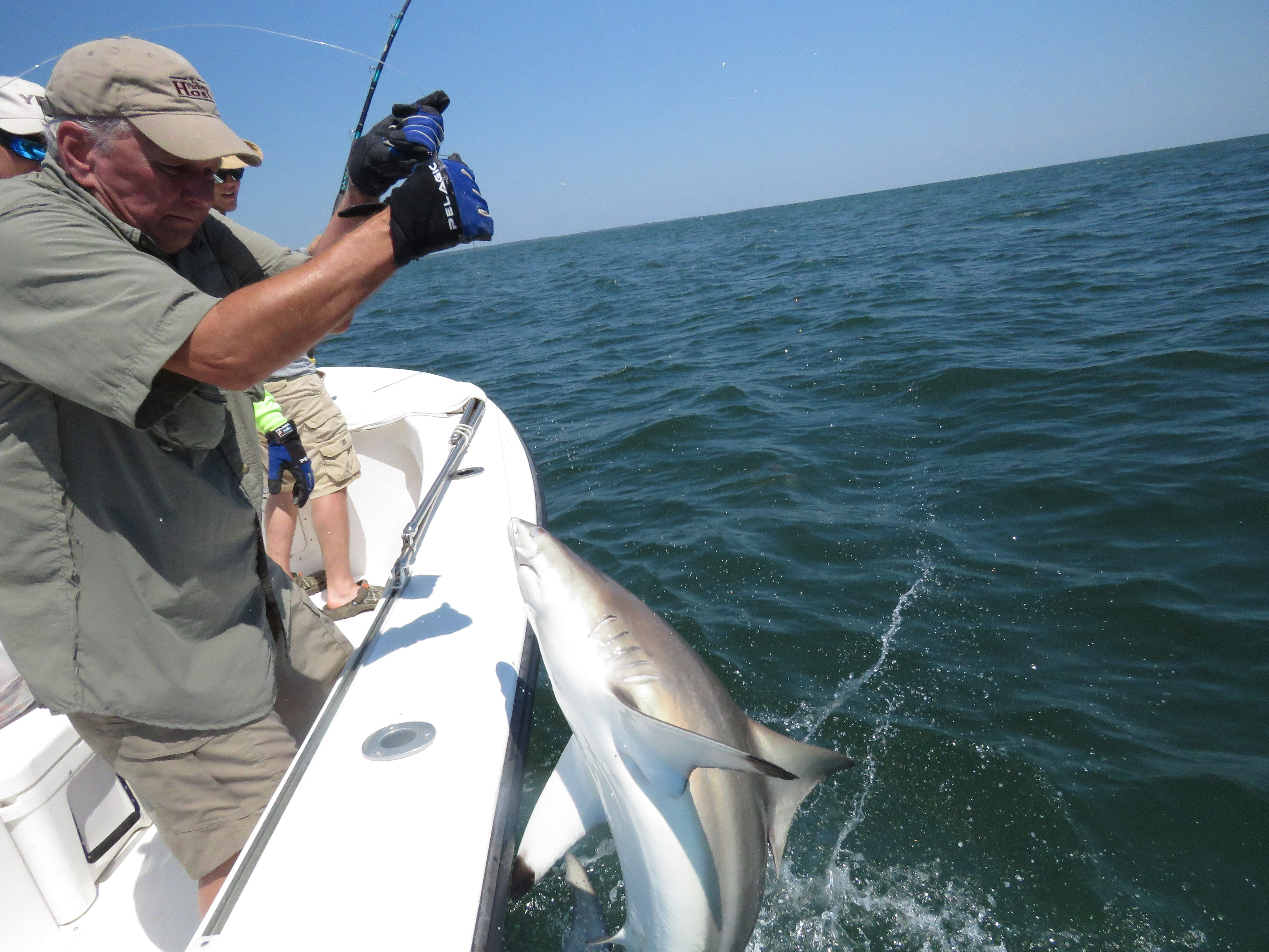 best ga charter fishing