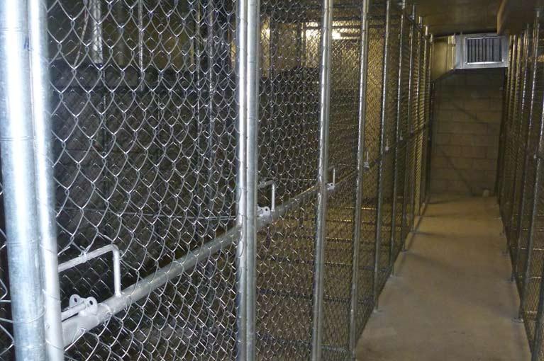 sureline fencing storage cages