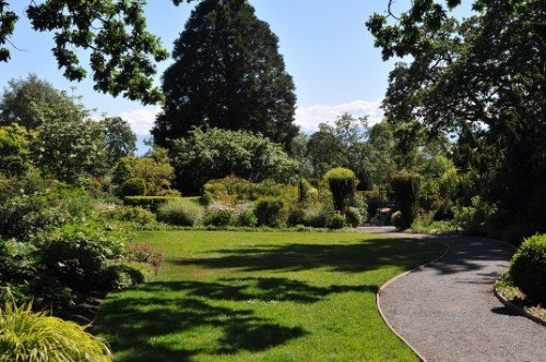 giardino esterno con alberi e piante
