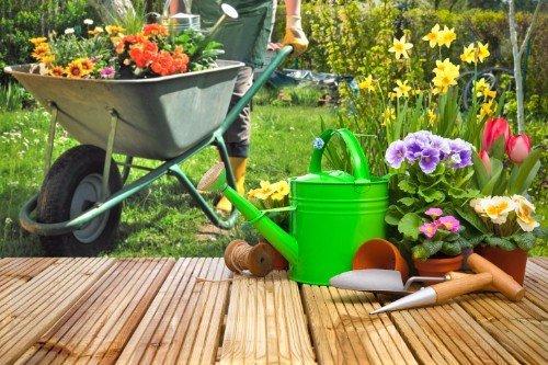 Donna piantando fiori nel giardino