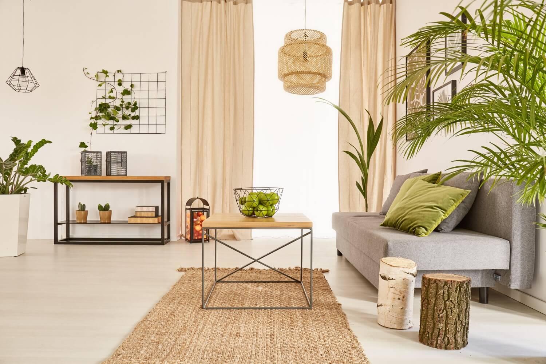 soggiorno con piante