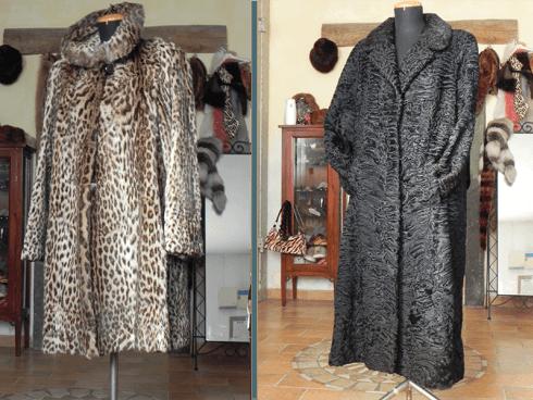 Cappotti ocelot e persiano