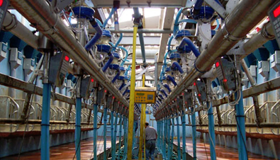 Pipes and equipment inside the dairy