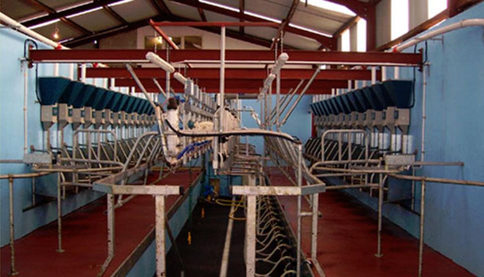 Dairy interior