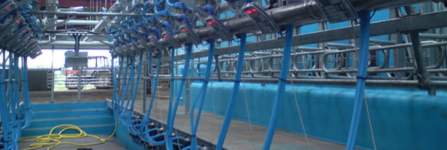 Equipment inside the dairy
